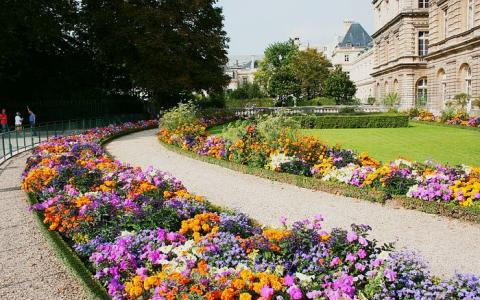 Spend a romantic Valentine's Day in Paris