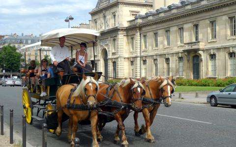 Paris by horse-drawn carriage; an unforgettable tour